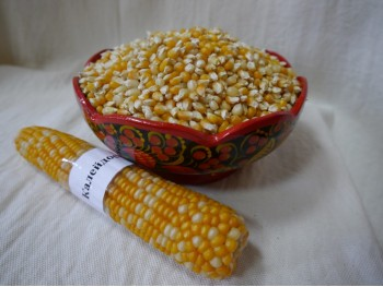 Кукуруза для попкорна «Калейдоскоп».бум/пакет
